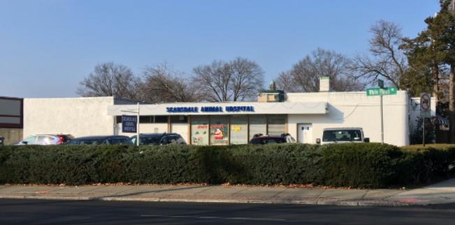 Scarsdale Animal Hospital - Veterinarian in Scarsdale, NY